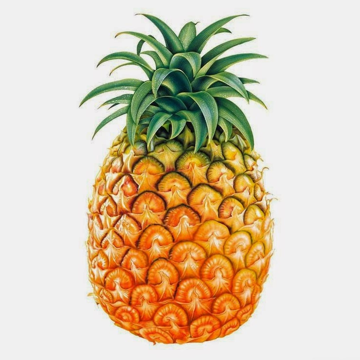 TREND: Pineapples!